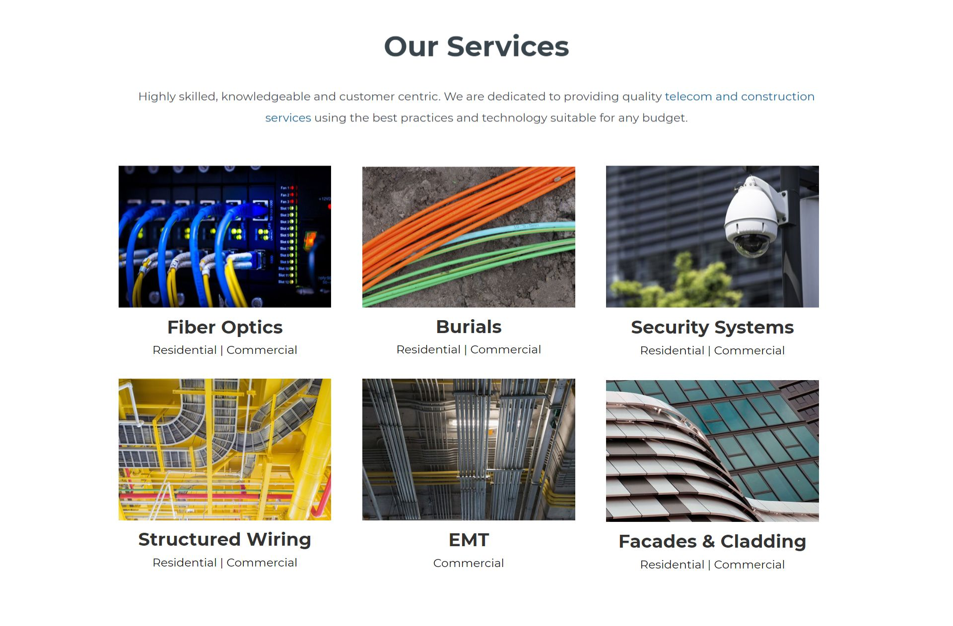 our-services-bird-and-rhino-TCG